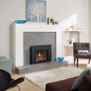 REGENCY-L234-gas-insert