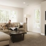 "Dimplex Electric Fireplace – 33"" , 45″, 39″ Slim Line Built-in Firebox"