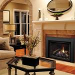 Kingsman Direct Vent Gas Fireplace- Direct Vent Insert IDV26