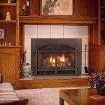 mendota-d-series-gas-fireplace-insert