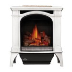 napolean-bayfield-GDS25-gas-stove