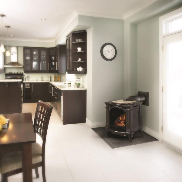 Napoleon Gas Stove – Bayfield Direct Vent Gas Stove
