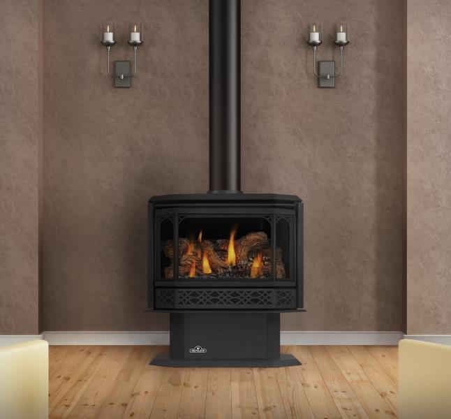 Napoleon Gas Stove - Havelock Direct Vent Gas Stove - The ...