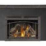 napolean-infrared-XIR4-gasinsert-fireplace