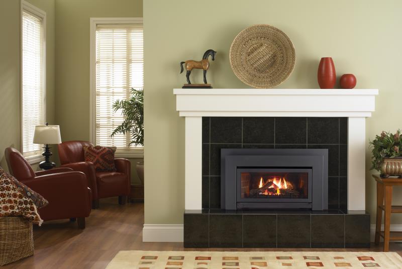 Regency Gas Insert Energy E21 Gas Insert The Fireplace Club