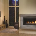 Regency Gas Fireplace – Horizon HZ40E