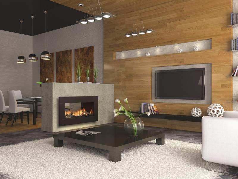 Regency Gas Fireplace – Horizon HZ42STE See Thru