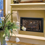 astria-Alpha-gas-fireplace