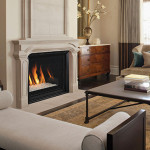 Astria Gas Fireplace – Envy CD Gas Fireplace